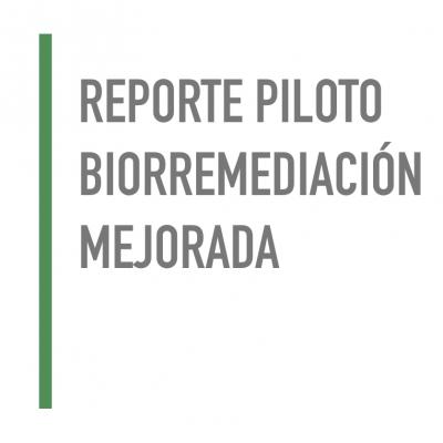 Reporte piloto Biorremediación Mejorada
